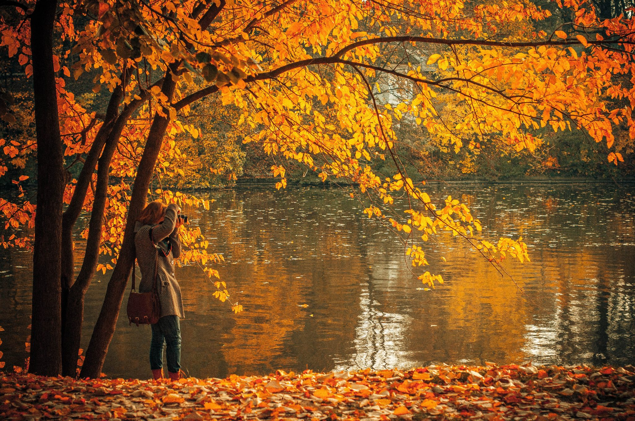 10 Reasons Why Fall is the Best Season of the Year -