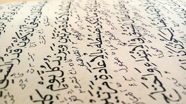 Neo-Traditionalist Scholars Do Not Speak for All Muslims -